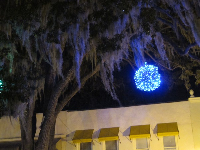 Christmas decoration lights up the Spanish moss on Park Ave.