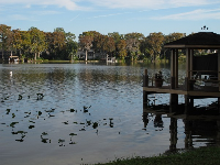 Covered dock on Lake Maitland.