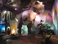 The dinosaur area is impressive!