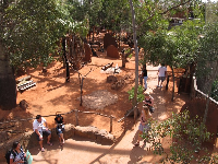 Visitors stroll around the Kangaroo Walkabout area, which is open-air.
