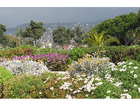 Flowerbeds and mountain views, where Cabrillo Blvd meets Calle Cesar Chavez.