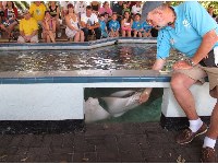 A volunteer leads a talk about hand-feeding sting rays.
