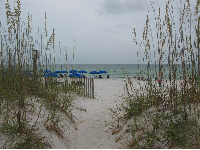 Sea oats and blue umbrellas welcome you.