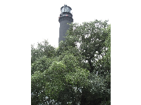 The lighthouse and trees.