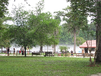 Park-like environment with benches and walkways at the springs.