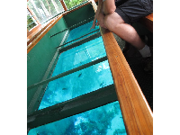 You can see clearly through the glass on the glass bottom boat.