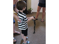 A boy holds a snake.