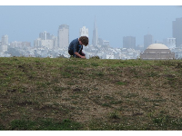 Quiet moment on a hill at Crissy Field.