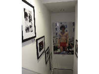 Bob Bonis Archive photos in The Betsy Hotel, of the Beatles and the Rolling Stones.
