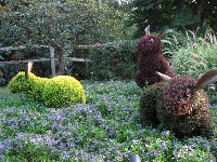 Sculpted rabbits made of plants, during the Imaginary Worlds exhibit (May-Oct).