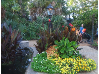 Tropical-looking flower beds.