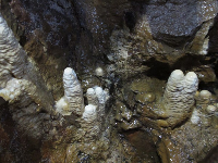 A small section of stalagmites.