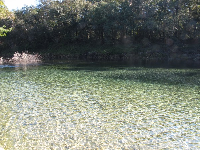 The clear water what the spring meets the Withlacoochee River.