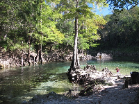 Where the spring meets the Withlacoochee River- paradise!