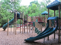 The playground, with the forest behind.