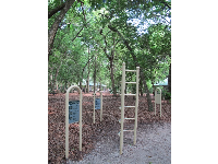 The World Trail exercise stations along the jogging trail.