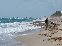 A couple explores the shore, with Lake Worth Pier in the distance.