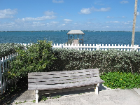 Bench, and fishing pier in distance.