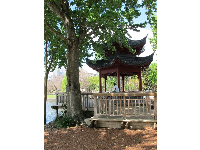 Korean gazebo.