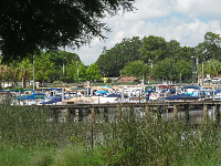Views of the marina.