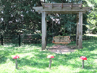 Swing for kids, with fairy mushrooms in foreground.