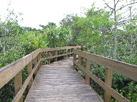 Boardwalk trail.