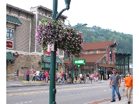 Parkway, the main street.