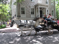 Horse-drawn carriage ride.