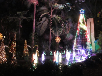 The light and music show in the garden during the Festival of Trees.