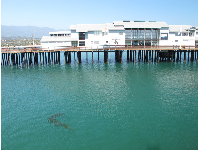 Ty Warner Sea Center, on the pier.