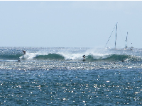 Surfers enjoying some rides at Bowls.
