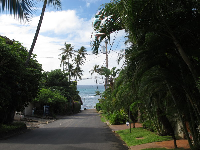 Looking down pretty Kulamanu Place toward the ocean.