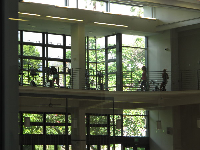 The Recreation Center has large attractive windows.