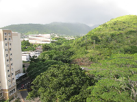 View of Manoa Valley from the top of the round dorms.