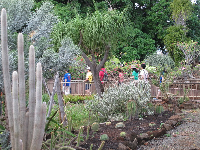 Visitors check out the cactus garden.