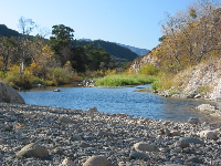 Santa Ynez River, at wintertime. Kids will be entertained as they make a pile of their favorite rocks.