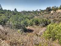 View on the San Antonio Creek trail, that starts at the far eastern end of the parking lot.