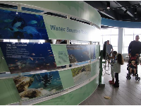 The displays educate you about manatees and the lagoon.