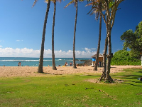 The grassy lawn at Kuilima Cove.