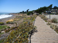 The long boardwalk.
