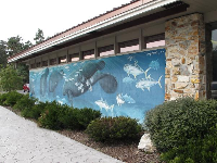 Mural on the building.