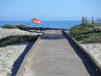 Boardwalk over the dunes.