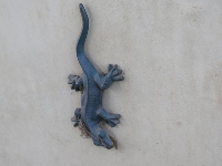 Lizard sculpture on the wall.