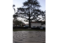 The labyrinth at Trinity Episcopal Church, on the northwest lawn accessible to the public, fun for kids to walk around.