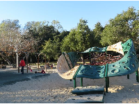 The climby and swings.