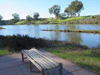 A bench by the lagoon.