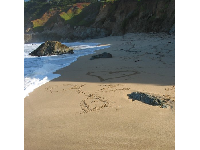 Love-notes in the sand.