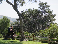 A couple sits on a picnic table.