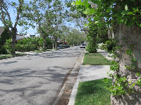 Trees along the road make a walk on South Rodeo Drive a pleasant experience!