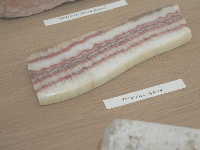 Rock that looks like petrified bacon, in Jimmie Durham special exhibit.